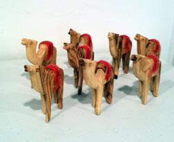 superior camels